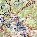 wsg-friedewald