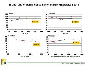 Proteinbildung WW